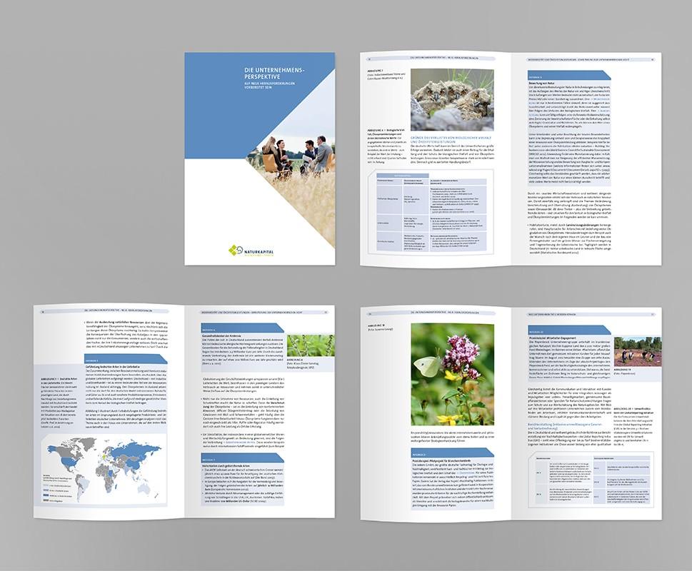 6 UFZTEEB Broschur Unternehmensperspektive 170x240 auch barr 1