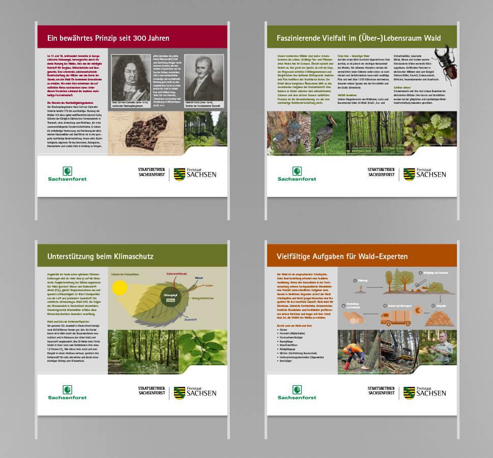 1 ForstSachsen Postertafeln Auswahl