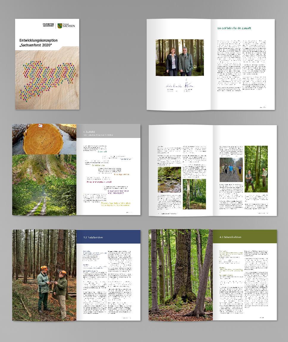2 ForstSachsen Entwicklungskonzeption Broschur