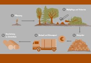 ForstSachsen Startbild